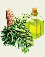 Массаж пихтовым маслом, медом и мумие